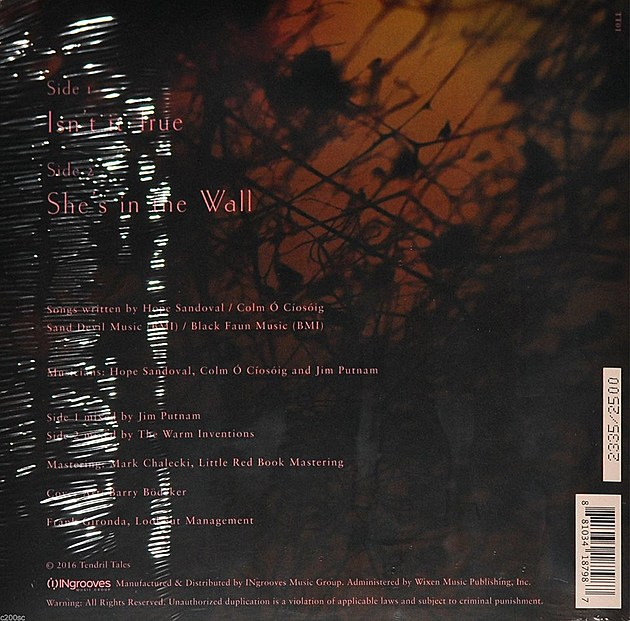 Hope Sandoval Record Store Day release