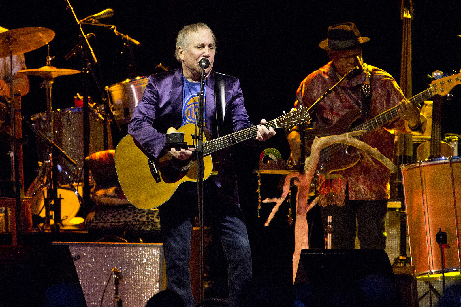 Paul Simon at Forest Hills Stadium, NY