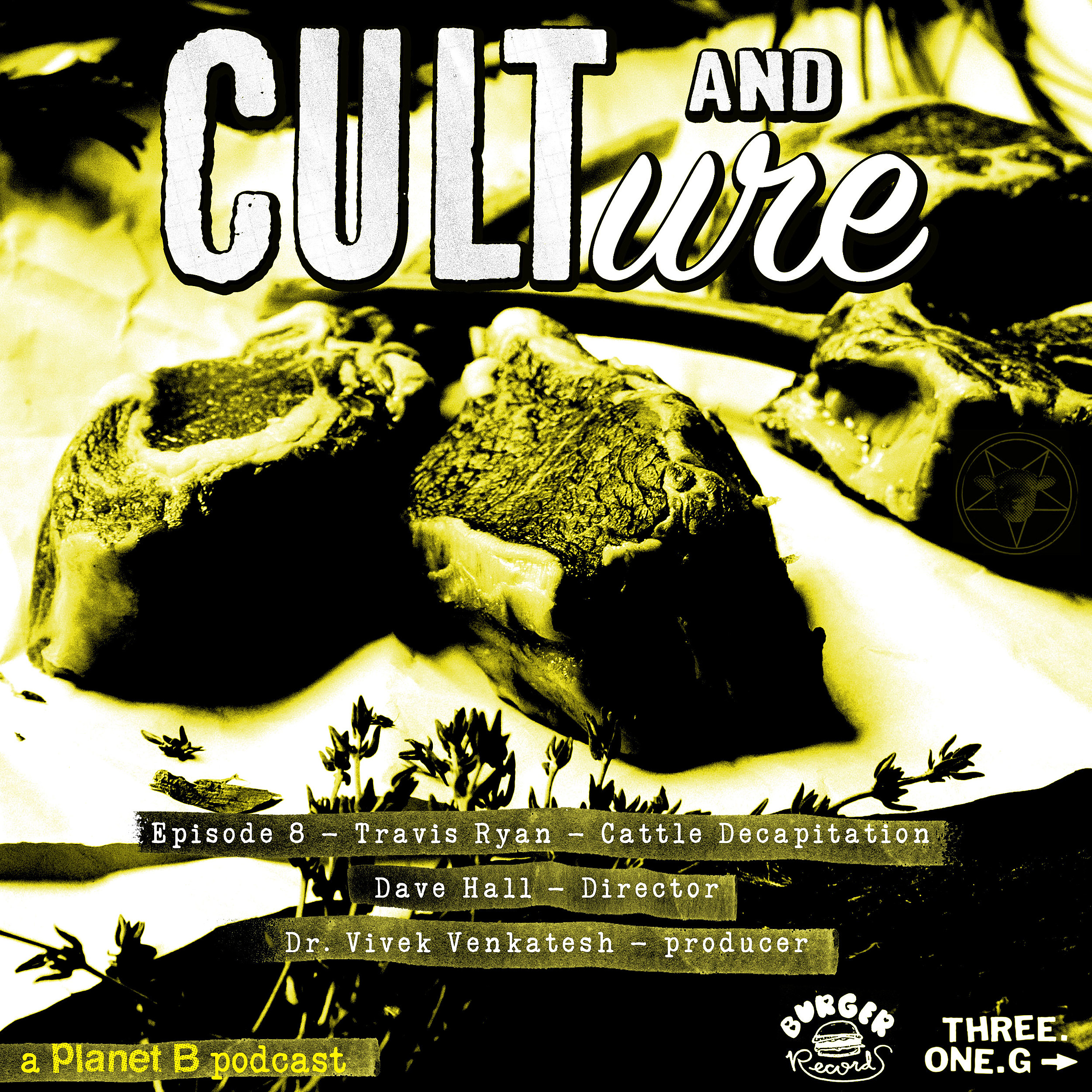 Cult and Culture 8