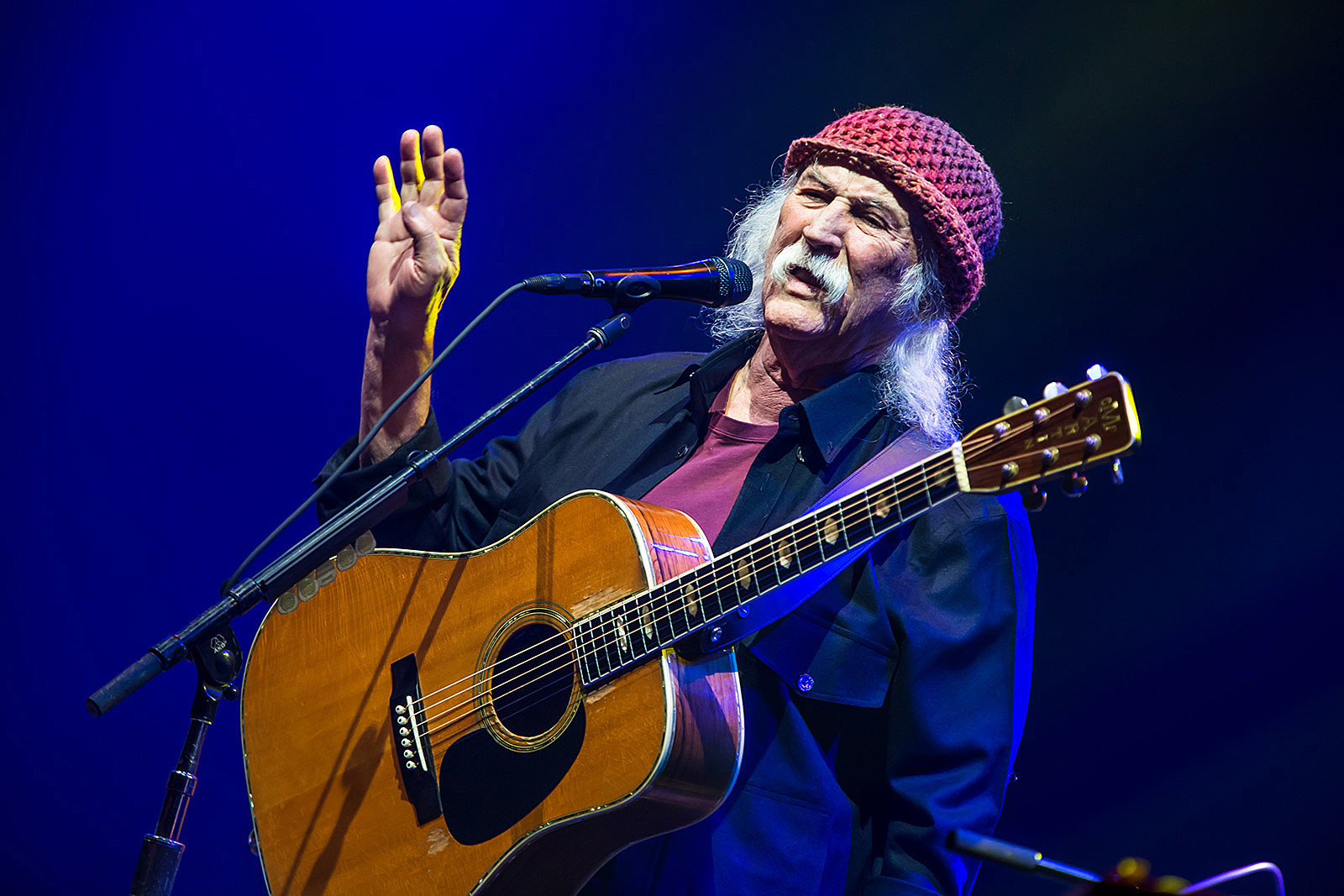 David Crosby and Friends at Capitol Theatre