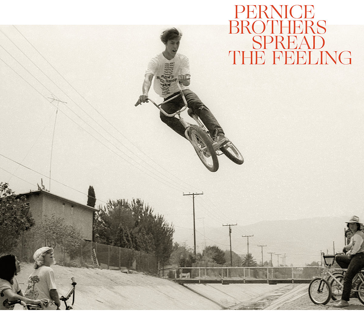 pernice-brothers