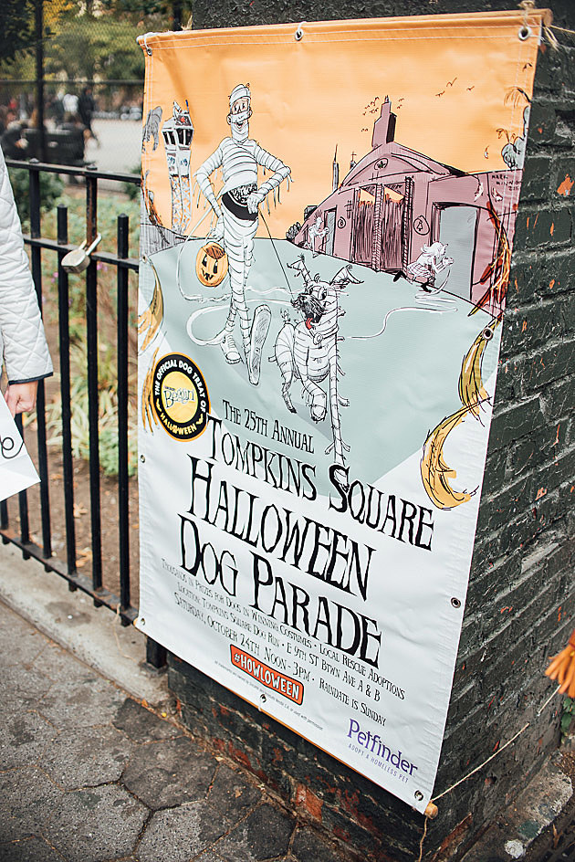 Tompkins Square Halloween Dog Parade 2015