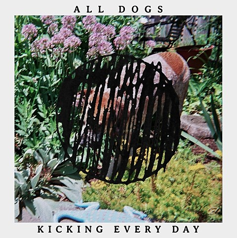 All Dogs Kicking Every Day