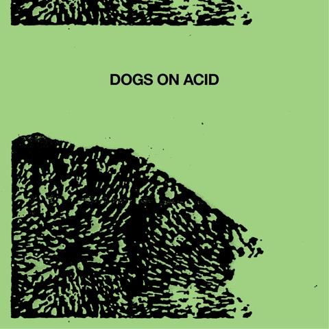Dogs on Acid