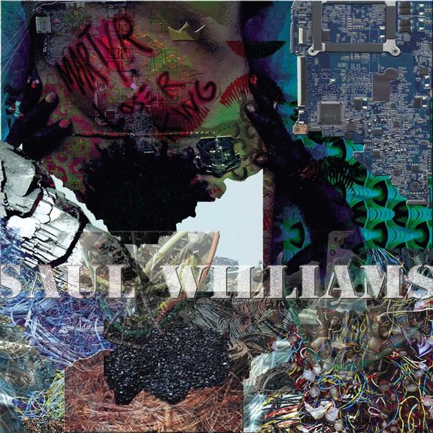 Saul Williams