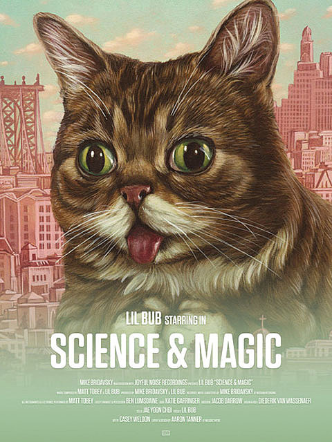 Lil BUB releasing an album, 'Science & Magic: A Soundtrack to the Universe' (watch the trailer)