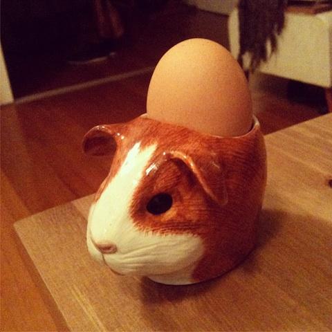 hamsteregg