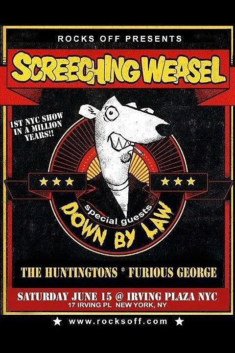 Screeching Weasel Down By Law