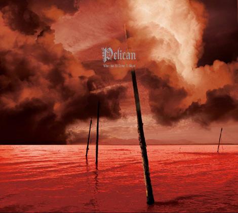 Pelican LP