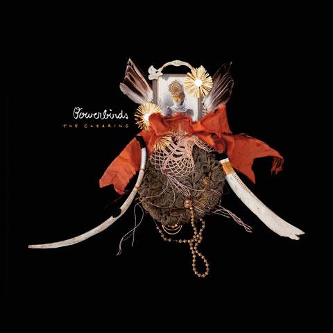 bowerbirdsart