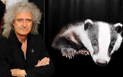 brian may twitter