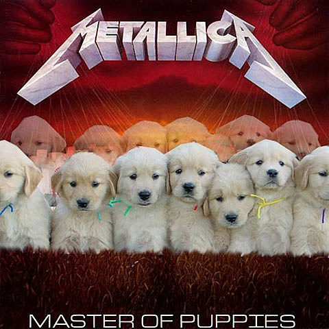 Master of Puppies