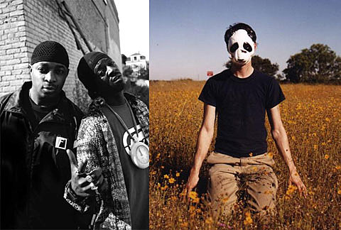 Public Enemy and Panda Bear