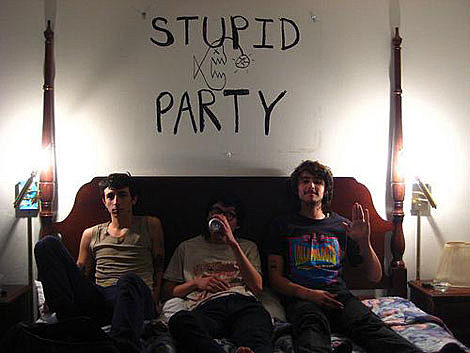 Stupid Party